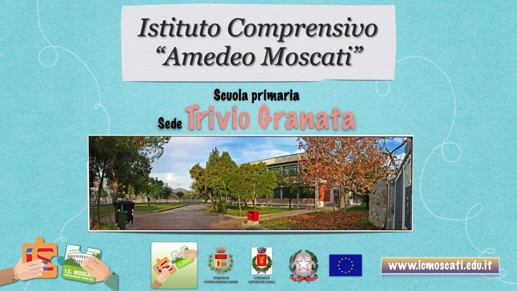 Primaria_Trivio